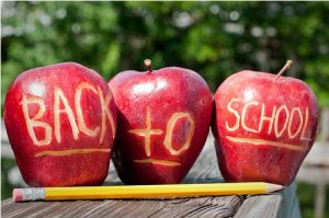 First Day Procedures & Important School Information
